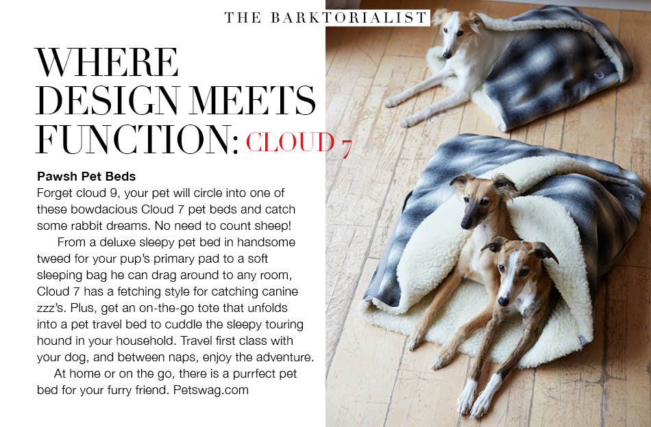 The Barktorialist Magazine